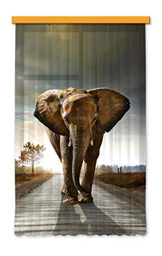 Gardine/Vorhang FCS L 7507, Elefant, 140 x 245 cm, 1 teil