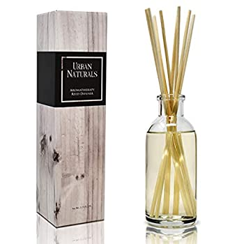 Urban Naturals Patchouli Woods Reed Diffuser Scent Sticks Gift Set | Sandalwood Patchouli & Ylang Ylang | Scented Oil for Mid to Large Size Rooms Vegan Made in The USA