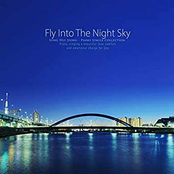 Fly the night sky
