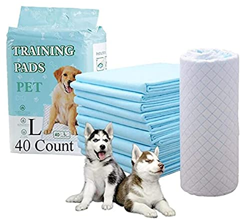 HI FINE CARE Pet Pads for Dogs,Puppy Pads Pee Pads Puppy Pads,Improved Quality Puppy Pee Pads Dog and Puppy Pads,Super Absorbent,Quick-Dry Surface Dogs,Strong Water Absorption(4) (2424in)