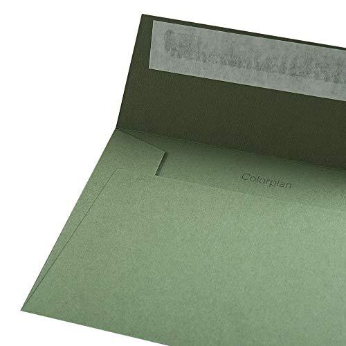 Colorplan Hüllen DIN C6 Farbe: Olivgrün