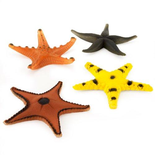 U.S. Toy Plastic Starfish
