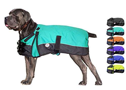 Derby Originals Horse Tough 600D Ripstop Waterproof Reflective Winter Dog Coat 150g Medium Weight, Turquoise, 26.5'