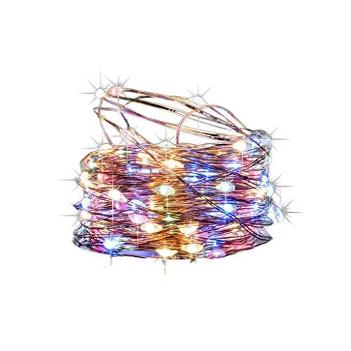 Guirnalda de luces LED de 10 m/12 m/20 m/22 m/32 m/52 m/102 m para exteriores para fiestas de Navidad, guirnalda de iluminación de San Valentín (102 m de luz mulitcolor)