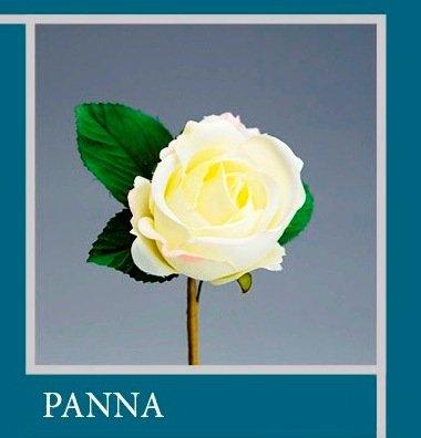 'Set 35pezzi, Bonbonnière Fleur Bouquet Fleur Rose cm 7 x 13 (ck5017) (Crème)