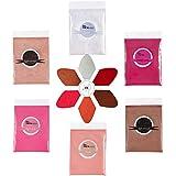 PARAMISS lip gloss pigmento in polvere 5 colori x 10g e bianco metallizzato luccicante perla glitter pigmento in polvere per lucidalabbra rossetto ombretto pigmento di colore di grado cosmetico