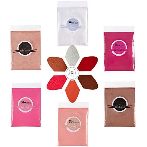 PARAMISS Polvo de pigmento para brillo de labios, 5 colores x 10G...