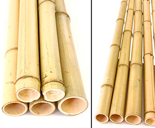 bamburör bauhaus