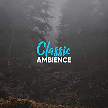 # Classic Ambience