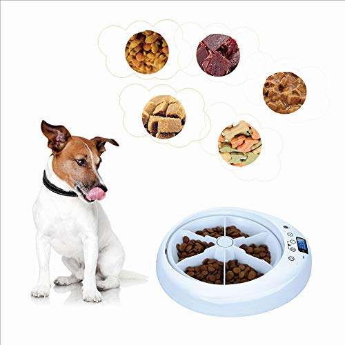 Jumr Timed Cat Feeder Intelligent Automatic with...