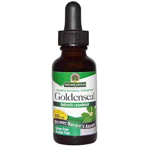 Nature's Answer | Gelbwurzel (Goldenseal) | Alkoholfrei | 500 mg | 1 fl oz (30 ml) | vegan | glutenfrei | sojafrei