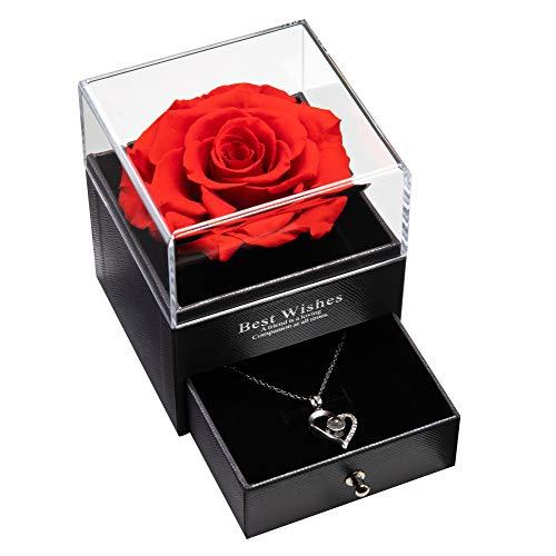 Eterna vera rosa con collana I Love You, confezione regalo di gioielli in 100 lingue, eterna vera rosa per la festa della mamma, anniversario di matrimonio, regalo di compleanno per lei (Rosso)