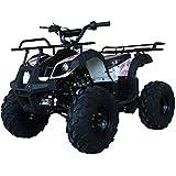 X-PRO ATV for Sale 125cc ATV Quad Youth 4 wheeler ATVs Adults ATV Four Wheelers (Pink Camo)