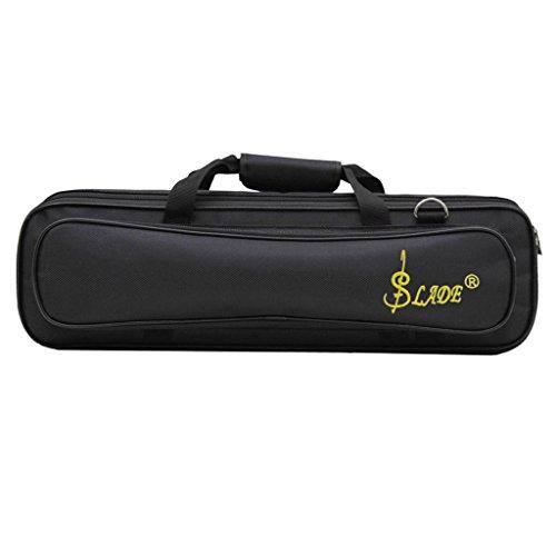 Querflötenkoff Tragekoffer Koffer Tasche für Querflöten - Schwarz