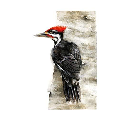 Pileated Woodpecker 5 ☆ popular Watercolor - bird art wall decoration Sacramento Mall print