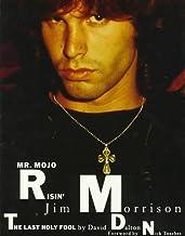 Mr. Mojo Risin': Jim Morrison, the Last Holy Fool