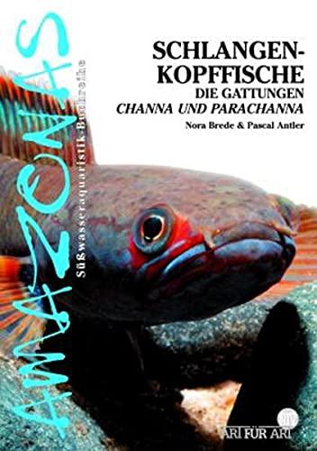 Schlangenkopffische: Die Gattungen Channa und Parachanna