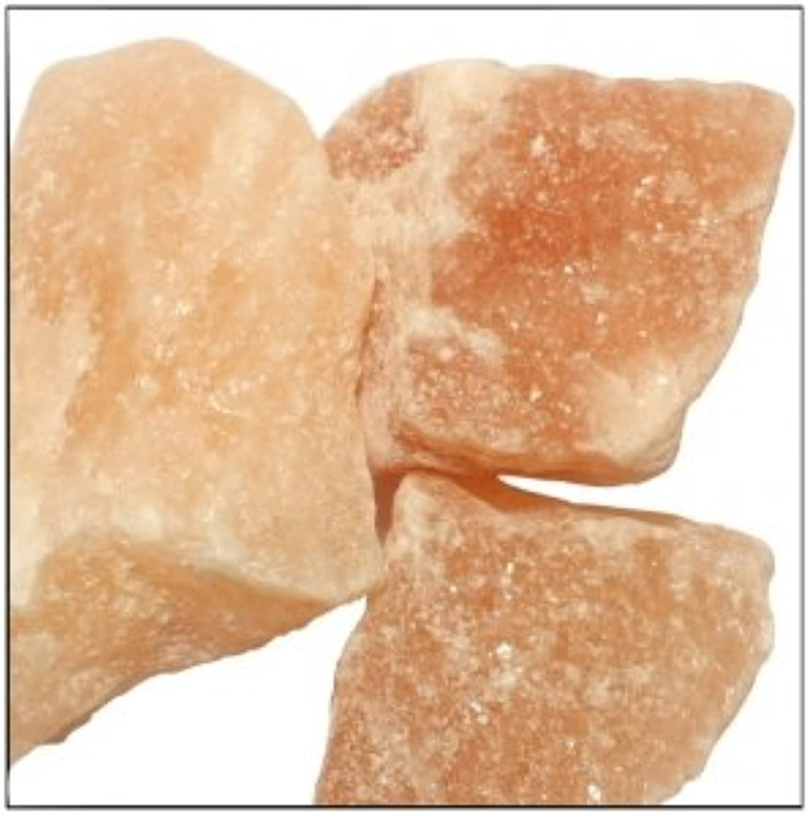 タンク辛な剛性ヒマラヤピンク岩塩500g