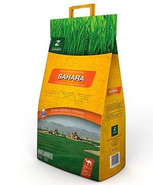 Semilla Césped bajo consumo Sahara Zulueta 5 Kg