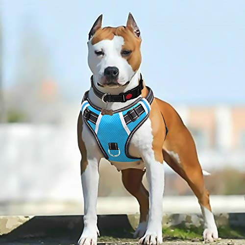 BABYLTRL Big Dog Harness No Pull Adjustable Pet Reflective Oxford Soft Vest for Large Dogs Easy Control Harness (L, Sky-Blue)