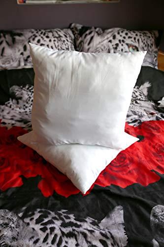 Warez Bedding - Cojines de relleno (blanco, lote de 2) cojines interiores, funda de polialgodón (45 x 45 cm)