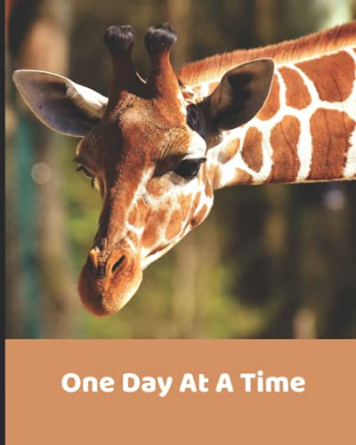 One Day At A Time: Undated Weekly Planner | Personal Inventory | One Day At A Time | Al-Anon Journal | Self Care | Prompted Journal notebook | ... with Alcoholic | Adorable Giraffe Planner