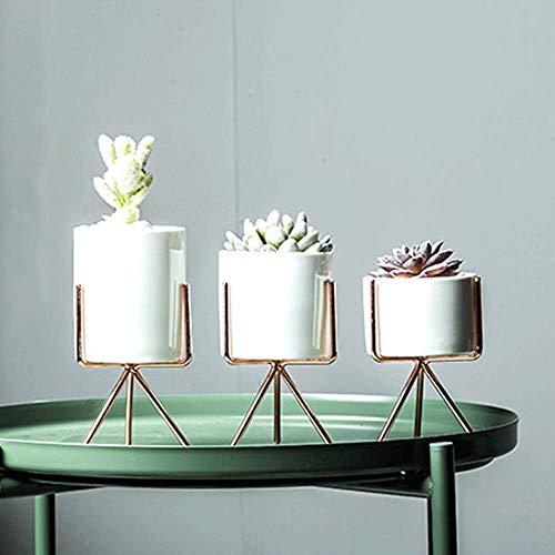Sungmor 8CM Nordic Style Ceramic Succulent Pots | 3 PACK Flowerpot Cactus Container with Rose Gold Plating Iron Frame Flowerpot | Creative Iron Art Set, Window Box Desktop Home Decoration