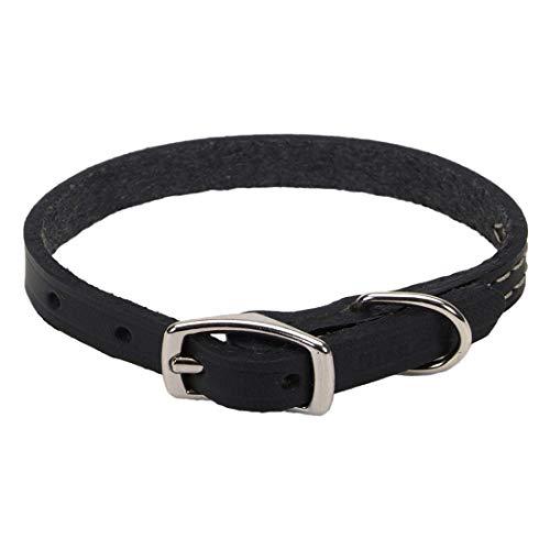 "Coastal - Circle T - Oak Tanned Leather Town Dog Collar, Black, 3/8"" x 12"""