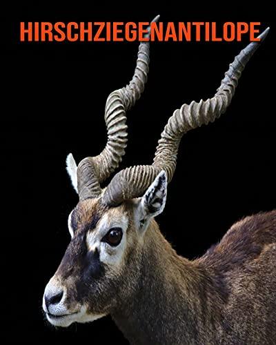 Hirschziegenantilope: Sagenhafte Fotos & Buch mit lustigem Wissen über Hirschziegenantilope für Kinder