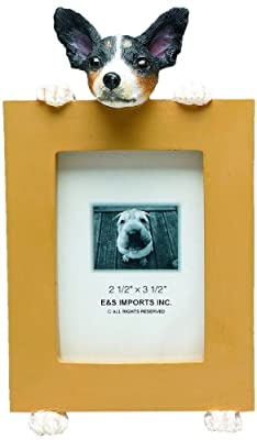 Rat Terrier Picture Frame Holds Your Favorite 2.5 by 3.5 Inch Photo, Hand Painted Realistic Looking Rat Terrier Stands 6 Inches Tall Holding Beautifully Crafted Frame, Unique and Special Rat Terrier Gifts for Rat Terrier Owners by E&S Imports, Inc