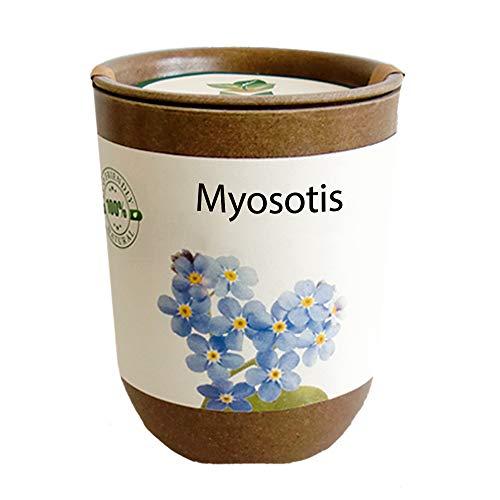 Feel Green Ecocan, Myosotis, Idée Cadeau (100% Biodégradable), Grow-Your-Own/Kit Prêt-à-Pousser, Le Pot Écologique Qui Croît 9 x 7 cm