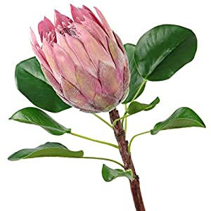 NA Honey Yo Artificial Protea Cynaroides Silk Flower for Floral Arrangements Home Party Fake Flowers