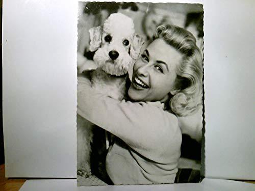 Alte AK / Fotokarte farbig der Schaupielerin Bibi Johns. Portrait mit weißem Pudel. gel. 1958