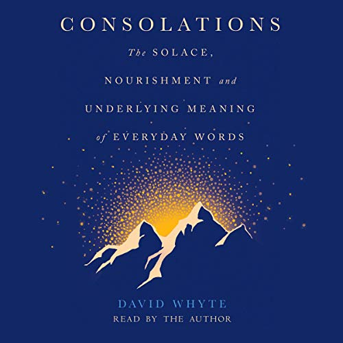 Consolations audiobook cover art