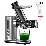 10 Best Carrot Juicer Machines