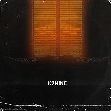 K9Nine
