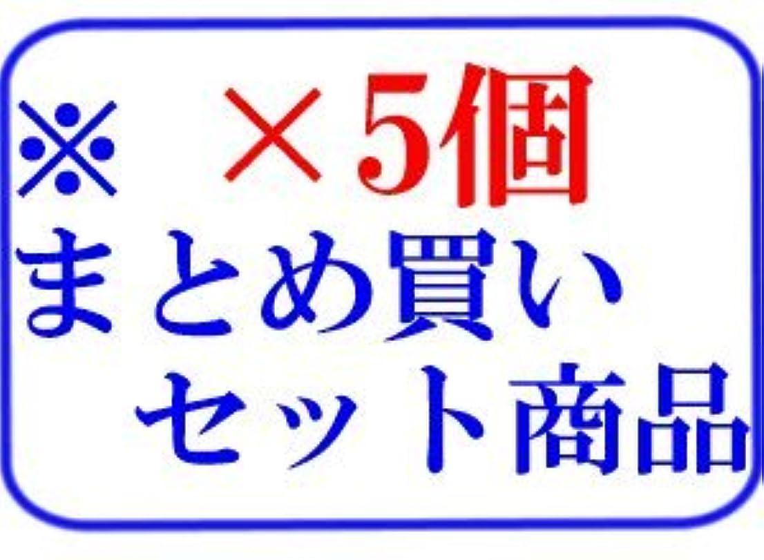 逃すサロン雑種【X5個セット】 ミルボン リシオ アテンジェ ヒートケア シャンプー 120ml