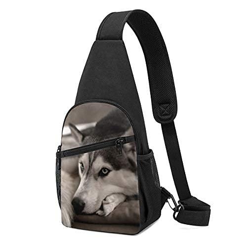 Husky - Mochila bandolera para perro