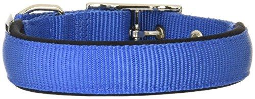 Ferplast Collar Nylon Daytona C 25 45 Azul ✅