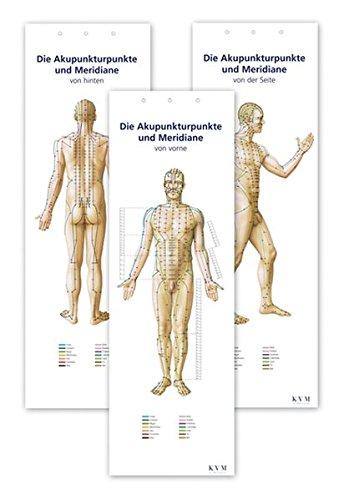 KVM, Der Medizinverlag:<br />Akupunktur-Poster-Set: Darstellung sämtlicher Akupunkturpunkte von vorn - jetzt bei Amazon bestellen