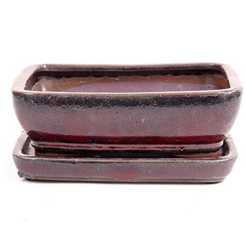 Bonsai - Schale eckig, 21 x 16 x 6,5 cm,Bordeaux, mit Untersetzer 23904