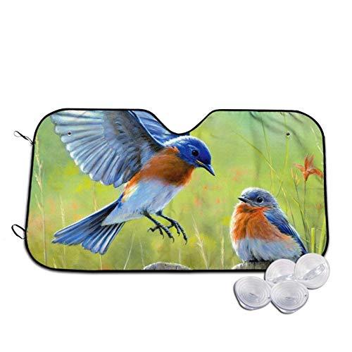 Eastern Bluebird - Parasol para parabrisas de coche, con estampado de rayos UV, tamaño mediano