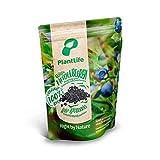PlantLife Arándanos BÍO 10x350g – arándanos crudos secados al aire – sin azúcar ni conservantes sulfurosos