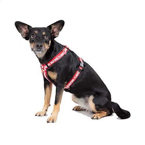 Alpha Industries Dog RBF - Arnés para perro, color negro