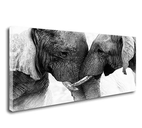 Black and white Elephant wall art decor
