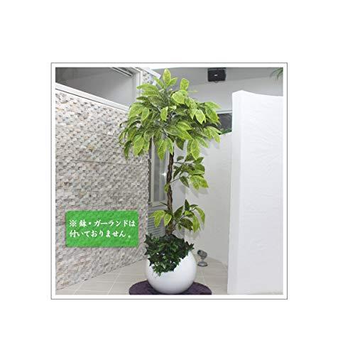 Funderful 人工観葉植物 光触媒 パキラ 165cm