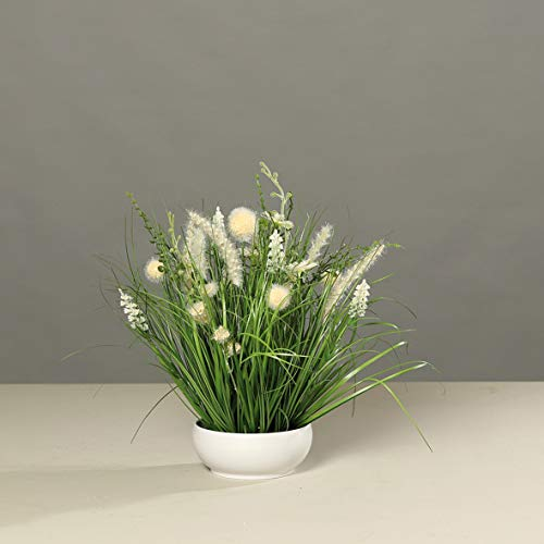 mucplants Blumengesteck weiß/Creme künstliche Wiesenblumen in weißer Schale, H40cm Tischgesteck Kunstblumen