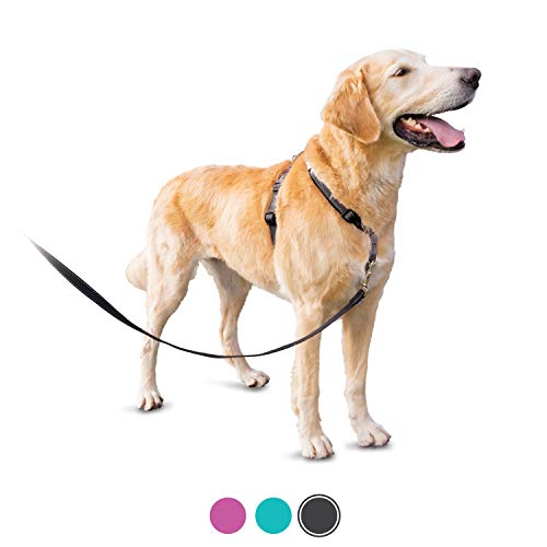 PetSafe 3in1 Harness, from The Makers of The Easy Walk Harness, Fully Adjustable No-Pull Dog Harness,Black,Large