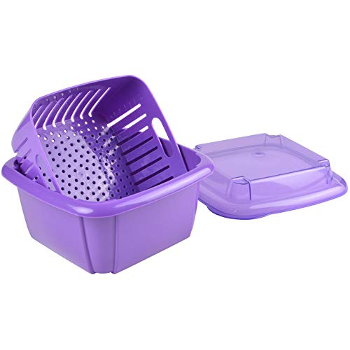 Hutzler 3-in-1 Berry Box, Violet by Hutzler