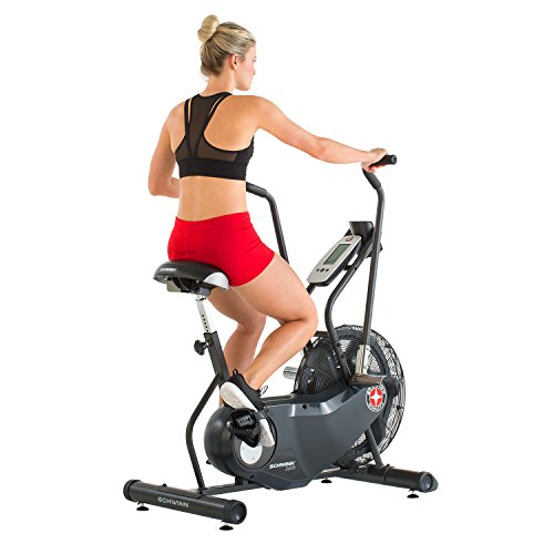 Schwinn AD6 Airdyne Exercise Bike,Black
